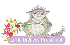 Little Diggers Preschool Collaroy Plateau